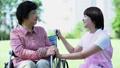 护理现场与轮椅的高级和微笑对话的助手 34959680