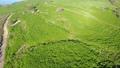 푸른 언덕 공중 촬영 35018052