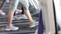 gym, fitness, female 35048540