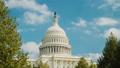 美國國會大廈 建築 華盛頓 35162485
