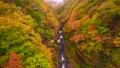 中津川渓谷 紅葉 風景の動画 35165387