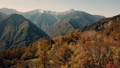 Autumn leaves from the Southern Alps Yasha 35296233