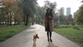 Charming woman texting on phone while walking dog 35352061