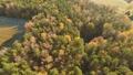 ธรรมชาติ,ป่า,ภูมิทัศน์ 35354625