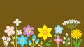 リズムに乗って揺れるカラフルな花々 35519631