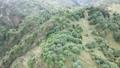 空拍 台湾 南投 石水山 鹿林山 玉山 Shishui Lulin Yushan Mountain 35529624