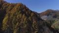 北アルプス 紅葉 山の動画 35535716