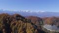 北アルプス 紅葉 山の動画 35535720