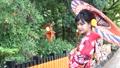 京都・番傘をさした着物姿の女性 35566705