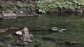 池山水源の湧水池 35636335