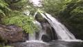 新緑と名水の滝 35636341