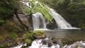 新緑と名水の滝 35636343