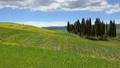 景色 風景 野原の動画 35649511