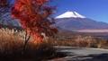 パノラマ台より新雪の富士山 35697917