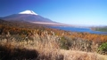 パノラマ台のススキと新雪の富士山 35698066