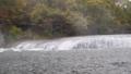 与东方尼亚加拉别名的吹瀑布 35865577
