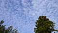 cloud, clouds, autumn clouds 35887341