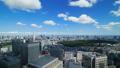 东京经典风景timelapse街市全景夏天蓝天和绿色天际平底锅 35903648