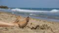 Legs of Woman Lying on the Beach near the Sea in 35963115