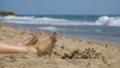 Legs of Woman Lying on the Beach near the Sea in 35986916