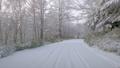 冬 雪 道の動画 36011599
