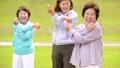シニア ストレッチ 女性の動画 36019874