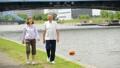 シニア ウォーキング 夫婦の動画 36020480