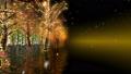 illuminated, illumination, illuminations 36026783