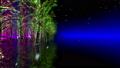 illuminated, illumination, illuminations 36026788