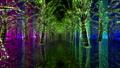 illuminated, illumination, illuminations 36026798