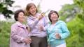 シニア 女性 ジョギング  アクティブシニア イメージ 36027488