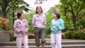 シニア 女性 ジョギング  アクティブシニア イメージ 36027490