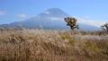 Mt. Fuji from Asagiri plateau-6122019 36040642