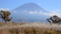 Mt. Fuji from Asagiri plateau-612 2022 36040643