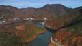 紅葉の精進湖空撮 36091986