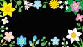 アルファチャンネル ループ素材 リズムに乗って揺れる花のフレーム 36093930