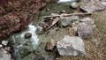 แม่น้ำไหล 36142327