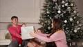 クリスマス 樹木 樹の動画 36207805