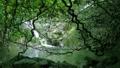 神秘的な奄美の森の中の滝の風景 (モダマ群生地) 36216384