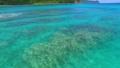 美しい海面をドローンで進む (奄美大島) 36216535