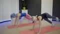プランク 女性 トレーニングの動画 36445691
