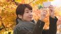 秋叶和一位小姐 36597362