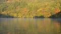 秋の湖面 36606137