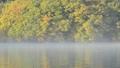 霧の女沼 36606138