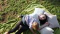 happy, park, outdoor 36653189