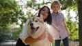 dog, park, pet 36653250