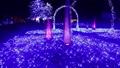 ประดับไฟ,แสง เบา,การส่องสว่าง 37026611