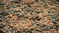 Natural Foods Seed Pile Rotating 37082735