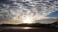 Early morning Uratomi Beach Tottori 37088255