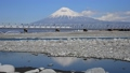 Fuji River and Mt. Fuji-6102071 37325663